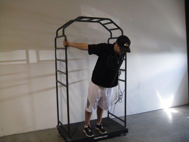 Vibeplate Vibe Plate Cage Vibecage Vibeplate Com Linear